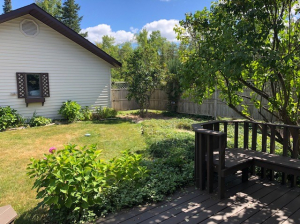 backyard-view-from-deck